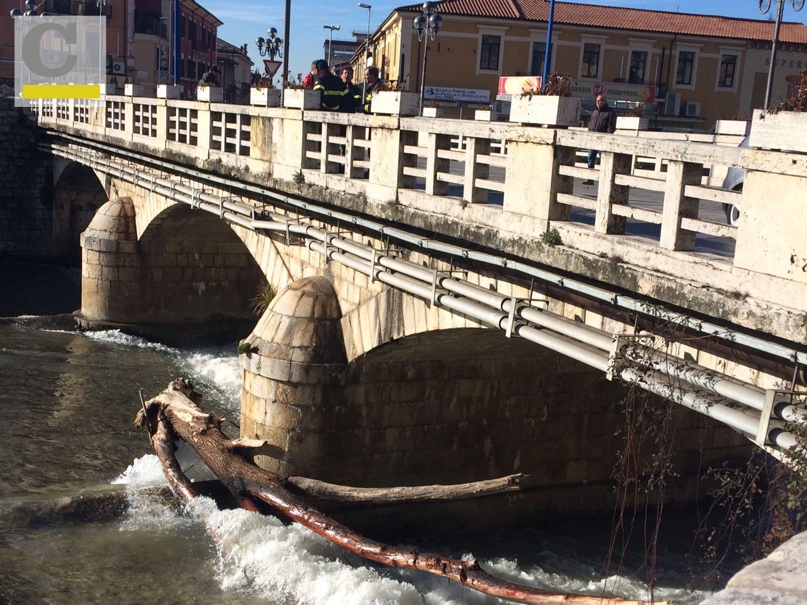 foto fiume liri un grande tronco incastrato nelle