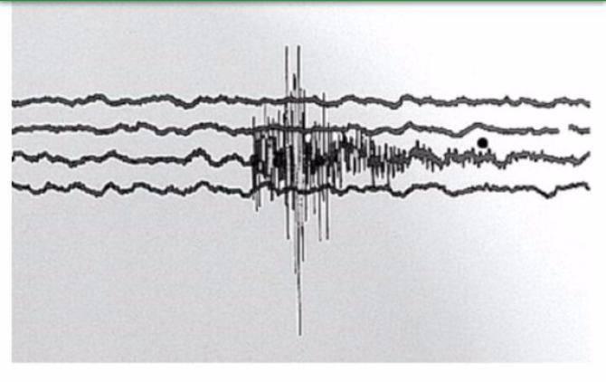 Terremoto: sequenza di tre scosse nell'arco di tre minuti